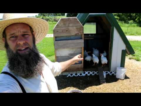 3 TRICKS TO RAISING CORNISH CHICKENS FOR MEAT