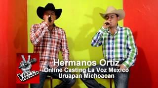 hermanos ortiz casting la voz mexico 2014