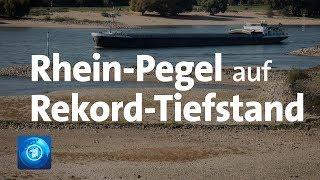 Nach Dürre-Sommer: Pegel im Rhein auf Rekord-Tief