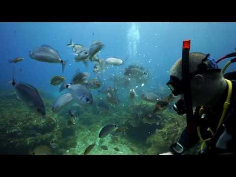 Emerald Diving Ireland | Malta Trip