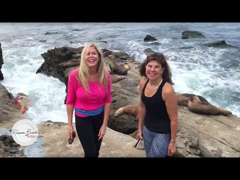 La Jolla California | Top Sight Seeing |  Trip to La Jolla Beaches