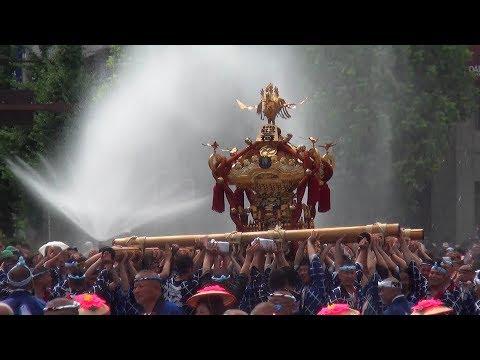 「深川八幡祭り」神輿連合渡御53基の全て