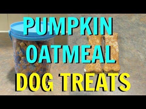 PUMPKIN OATMEAL DOG TREATS Recipe!  Ft. Ollie The Greyhound! Vlogmas 2018
