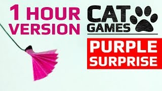 CAT GAMES - PURPLE SURPRISE (ENTERTAINMENT VIDEOS FOR CATS TO WATCH) 1 HOUR VERSION