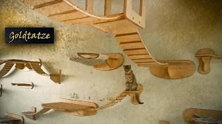 🙀 Goldtatze© Katzenzimmer  | Katzen Möbel Aus Holz  | Cat Tree Room