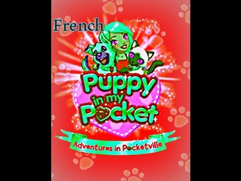 Puppy in my pocket song (french)