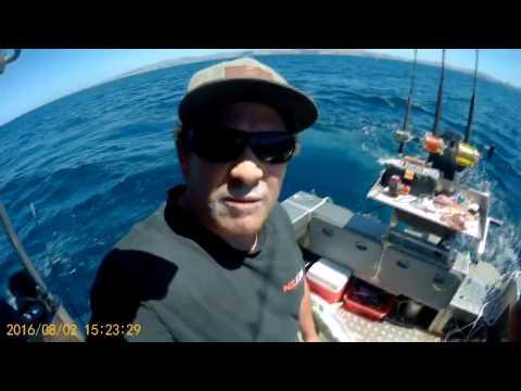 Fishing New Zealand Amateur Day 2 Waimarama