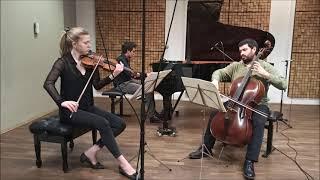 Brahms Trio op.8 - 2 movement