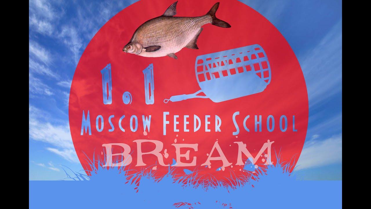 Рыболовные удилища — купить по выгодной цене с доставкой. 6099 моделей. Удилище фидерное salmo blaster feeder 90 330 (3135-330) · 1 764 ₽.