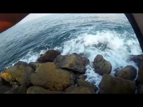 fishing blue runners shore jigging