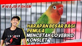 Download lagu ADI PRC BANJARNEGARA MENEGASKAN MASIH BANYAK PELUANG BAGI PEMULA UNTUK MENCETAK LOVEBIRD KONSLET