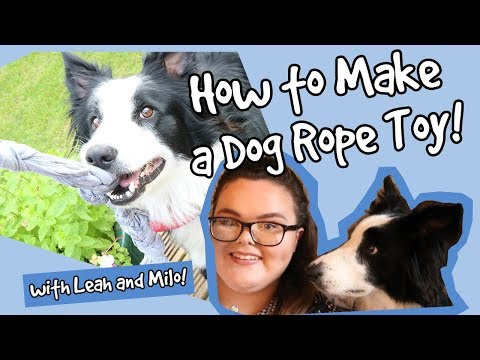 easy-diy-rope-dog-toy!-how-to-make-a-simple-rope-toy-for-your-dog-on-a-budget-from-household-items!