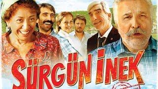 סורגון אינק (2014) Surgun Inek