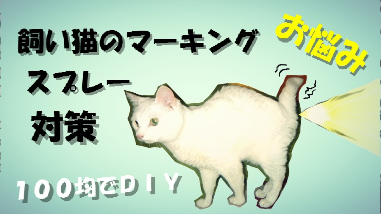 猫 マーキング 防止 猫がマーキングする理由とスプレーをやめさせる3つの対策!