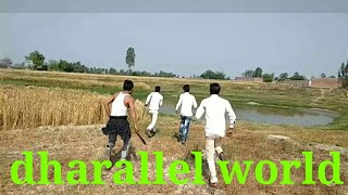 Dharallel world full now 2 hell video