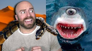 10 Crazy Mutated Animals that Actually Exist