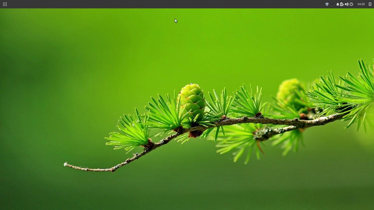 Linux Mint Budgie