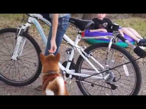 Bike Ride with Milo | Shiba Short