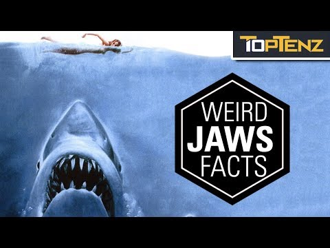 """Top 10 Surprising Facts About The Movie """"Jaws"""""""