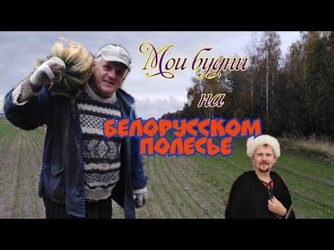 Мои будни на Белорусском полесье