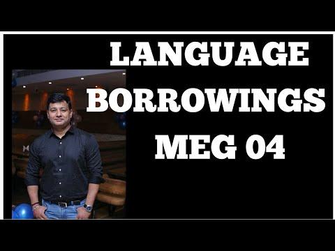 BORROWINGS ASPECTS OF LANGUAGE