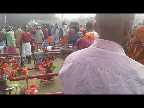Bol Bam 09.01.2018 Jakhar Vishanpur Ward No 3 Videos