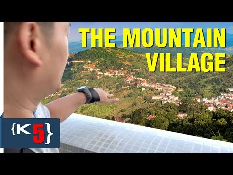 CRAZY solo trip to a mountain village in Northern Thailand | Doi Mae Salong
