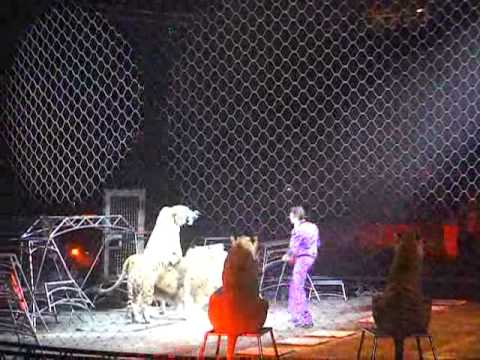 Ringling Bros. Circus Event! The Greatest Show On Earth! BEST VIDEO EVER! 3/2012.