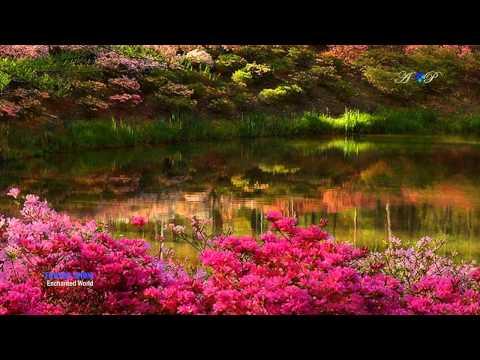 EDWARD SIMONI - Enchanted World (amazing pan flute music)