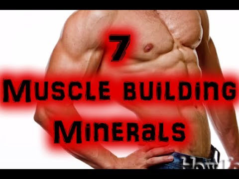 7 Best Muscle Building Minerals