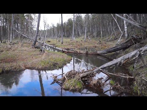 Рыбалка на малых реках весной | Рыбалка 2017 весна