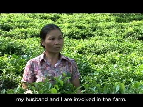Tran Thi Than, Vietnam -- Farmer Profile