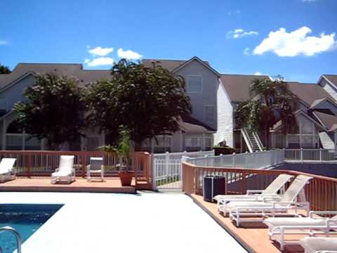 Carrollwood Gables condominiums rentals - Tampa, Florida
