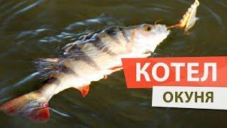 Веселая рыбалка в ОКУНЕВОМ КОТЛЕ. Попался окунь на 750 грамм