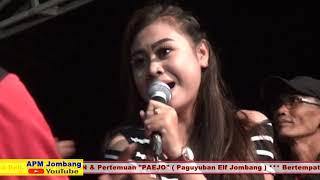 POLISI (Versi PAEJO) - GESTI ALUNA - BINTANG PALLAPA 2018 Live Tapen Jombang
