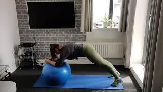 Plank elbow roll
