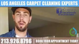 Los Angeles Carpet Cleaning Experts | Carpet Upholstery Rug Fine Fabric Cleaning | 213-926-8796