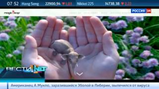 видео Fitbit | Computerworld Россия
