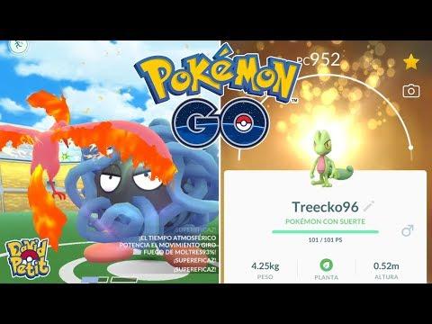 PREPARÁNDOME PARA EL COMMUNITY DAY DE TREECKO! TANGELA EN SOLITARIO!  [Pokémon GO-davidpetit] thumbnail