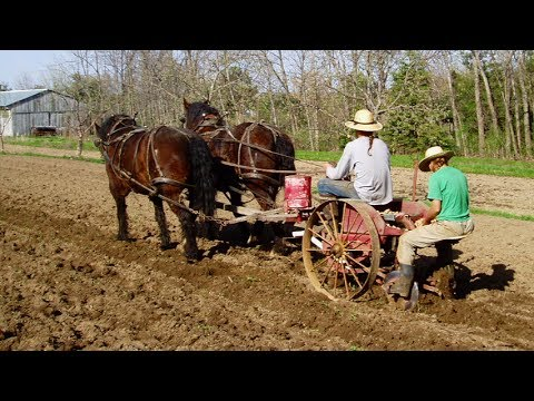Back to the Land - Earthen Path Organic Farm - Mobile Minute