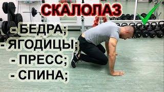 Тренируем мышцы ног - бедра, ягодицы, пресс, спину. Скалолаз на страже ваших мышц!