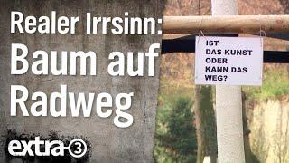 Realer Irrsinn: Baum auf Radweg in Koblenz