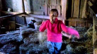 B&B La Genziana - Azienda agricola