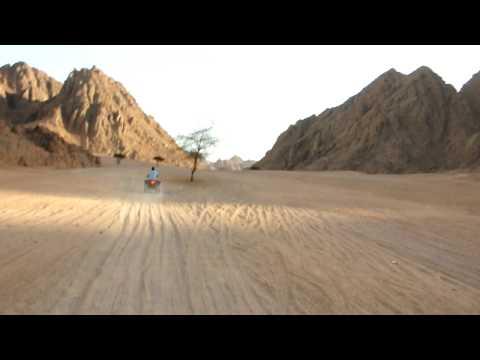 Sinai Desert (HD)