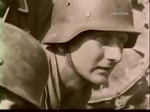 Журавли (С 9 мая,днём победы..вечная память тем кто не вернулся...) - (Памяти воинов, сражавшихся в Великой Отечественной войне 1941-1945 гг.) слушать онлайн песню