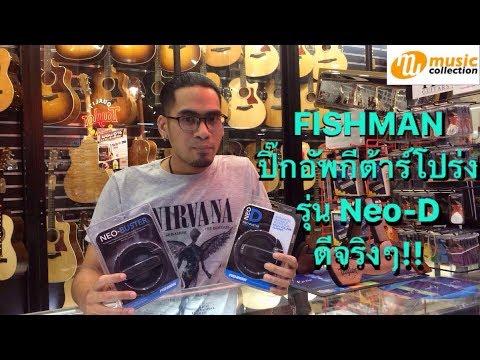 รีวิว Fishman Neo D Pickup, Single Coin, Hum Backing