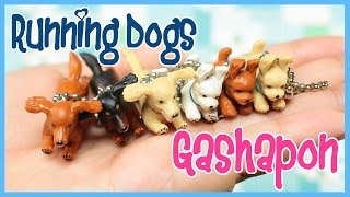 More Gashapon Videos! http://bit.ly/28JSxxx SUBSCRIBE TO MY OTHER C...
