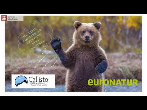 Green Belt: Europe- Balkans- Greece ! Photo contest 2017