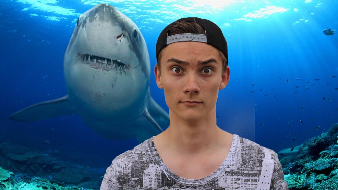 Det mandige skrig og hajen - 12 timers stream highlight