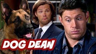 Supernatural Season 9 Episode 5 Review - Dog Dean Afternoon